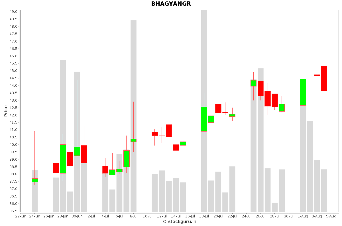 BHAGYANGR Daily Price Chart NSE Today