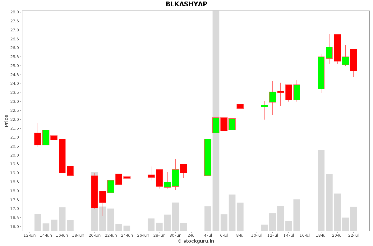 BLKASHYAP Daily Price Chart NSE Today