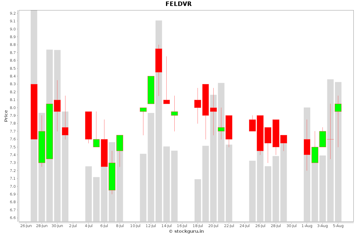 FELDVR Daily Price Chart NSE Today