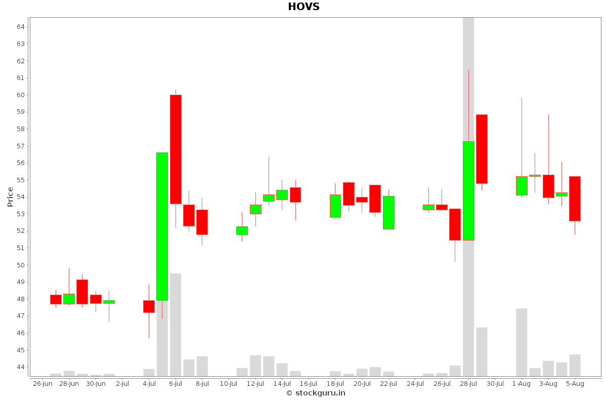 HOVS Daily Price Chart NSE Today